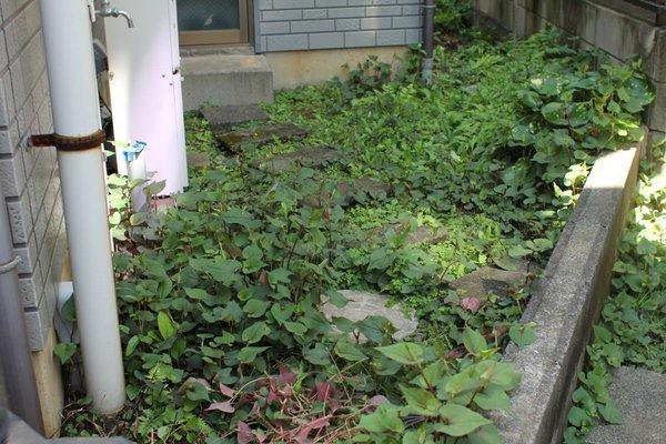 お庭の雑草対策!防草シートでお手入れを簡単に